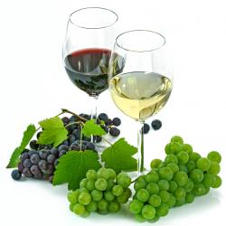 Traducción vitivinícola y enológica FR-ES