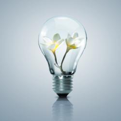 Traducción en energías renovables y eficiencia energética (EN-ES)