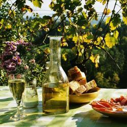 Máster de traducción gastronómica, enológica y turística EN-ES