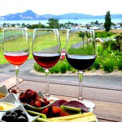Itinerario de especialización en traducción gastronómica y vitivinícola FR-ES